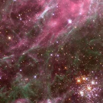 Nebulae : Tarantula Nebula Hodge 301